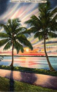 Florida Cocoanut Palms and Beautiful Florida Sunset 1960
