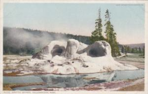 Grotto Geyser Yellowstone National Park Detroit Publishing