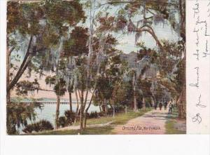 Florida Ormond North Walk 1907