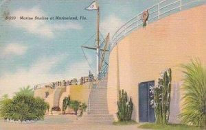Florida Marineland Marine Studios At Marineland