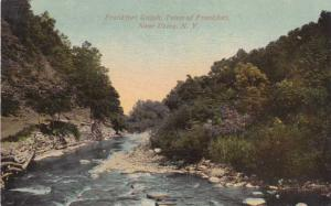 Frankfort Gulph near Utica NY, New York - DB