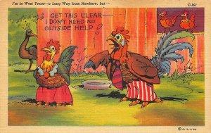 C-161 Ray Walters Comic I'm In West Texas Curt Teich Postcard