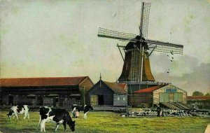 Village Cottages Cows Cattles Mill Postcard