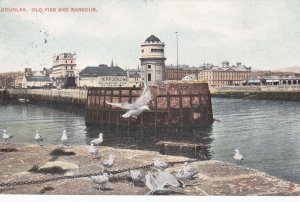 DOUGLAS, Isle of Man, UK, PU-1910; Old Pier and Harbour, Hippodrome, TUCK # 4773