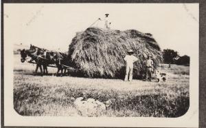 RP: Hay Wagon , 00-10s