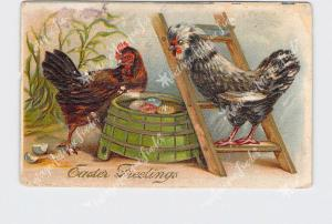 PPC POSTCARD EASTER GREETINGS ROOSTER ON LADDER HEN WITH EGGS EMBOSSED