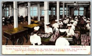 Canajoharie NY~Beech Nut Packing Company~White Room~Lady Factory Workers~1909