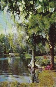 Florida Silver Spring Florida's Silver Springs Famed Underwater Fairyland