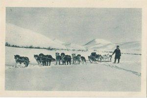 Cercle Arctique (ALASKA) , 1910s; Missionary & Dog Team