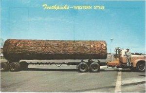 Toothpicks Western Style Tall Tale Vintage Chrome Postcard