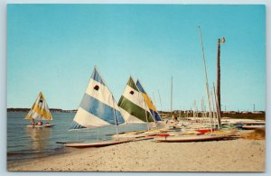 Postcard DE Rehoboth Beach Delightful Day on Bay Sail Paddle Boat N13