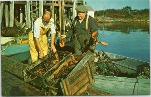 Two Men bringing in lobsters Maine postcard