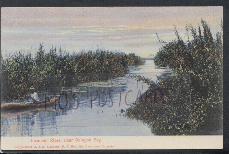 Mozambique Postcard - Incomati River, Near Delagoa Bay  RS17597