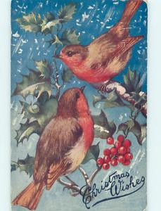 Pre-Linen christmas BEAUTIFUL LARGE BIRDS SITTING ON HOLLY BRANCH hr2870