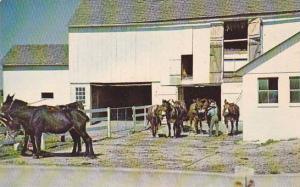 Pennsylvania Gettysburg Amish Country