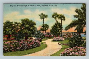 Daytona Beach FL, Trail Through Waterfront Park, Linen Florida c1954 Postcard