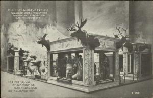 1915 Panama Pacific Expo H Liebes & Co Fur Exhibit Taxidermy Animals Postcard