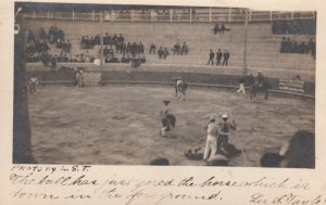 RP: Bull Fighting , Bull just gored a horse , Mexico , 1906