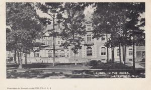 LAKEWOOD , New Jersey, pre-1907; Laurel in the pines