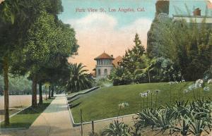 Los Angeles California~Park View Street~Nice Homes~1907 Postcard