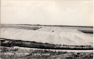 Old LIBERAL Kansas Kans Ks Real Photo RPPC Postcard BUMPER WHEAT CROP K72