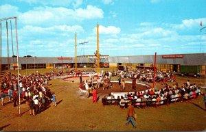 Florida Sarasota Circus Hall Of Fame Live Circus Acts