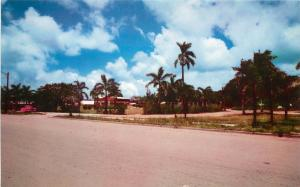 Vintage Chrome Postcard Plaza de Espana, Agana Guam Micronesia Unposted
