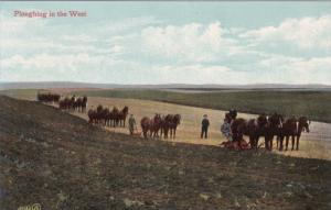 Ploughing in the West with Work Horses, 1900-10s