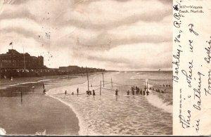 Virginia Virginia Beach Beach Scene 1906
