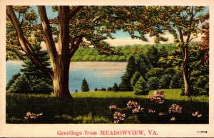 Virginia Greetings From Meadowview 1942