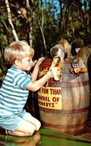 Florida Homosassa Springs More Fun Than A Barrel Of Monkeys Attra...