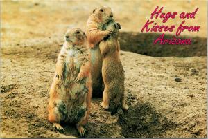 Hugs and Kisses from Arizona AZ Prairie Dogs Gophers UNUSED Postcard D94