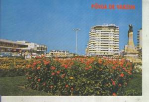 Postal 013917: Paseo Alegre de Povoa de Varzim, Portugal
