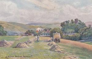Fulking & Downs Cropthorne 4x Antique Sussex & Oilette Farming Postcard s