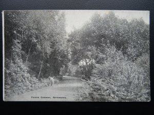 Kent SEVENOAKS Fawke Common - Old Postcard by J. Salmon
