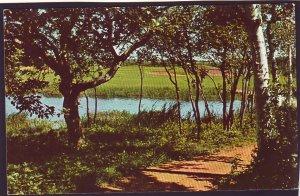 P1564 vintage unused postcard prince edward island lake of shining waters canada