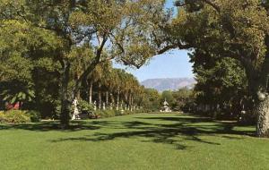 CA - San Marino, Henry E. Huntington Library & Art Gallery, North Vista
