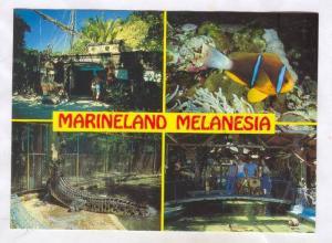 Marineland Melanesia, Green Island Great Barrier Reef, Australia,50-70s