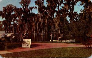 Florida Cypress Gardens The Boat Tour