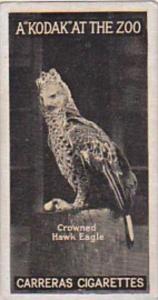Carreras Cigarette Card Kodak At Zoo 1st Series No 50 Crowned Hawk Eagle