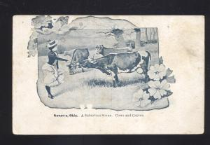 KONAWA OKLAHOMA WOMAN FEEDING COWS ANTIQUE VINTAGE POSTCARD OKLA.