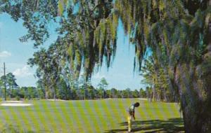 Golf Quail Creek Golf Course Myrtle Beach South Carolina