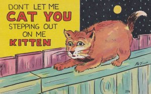 COMIC; 1900-1910's; Don't Let Me Cat You Stepping Out On Me Kitten