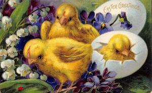 Bright Bold Easter Chicks Watch Lady Bug~Lily Valley~Violets~Gold Leaf~Ser 1520