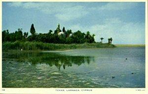 cyprus, LARNACA, Hala Sultan Tekke Mosque, Islam 1960s Raphael Tuck 118 Postcard