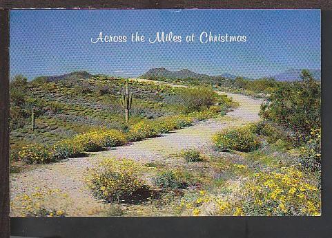 Christmas in AZ Postcard BIN
