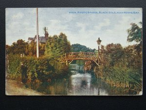 Kent BLACK SOLE Rustic Wooden Bridge HERNE BAY - Old Postcard by Photochrom