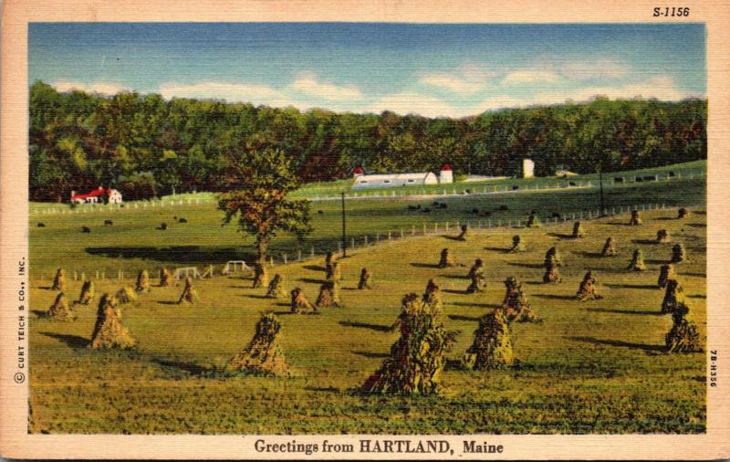 Maine Greetings From Hartland Curteich