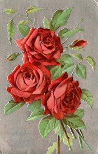 Greeting - Roses