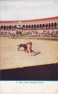 Bull Fight Valencia Spain